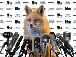 foxconference